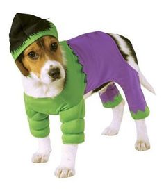 Feel like your walking on the set with the Marvel Hulk Dog Costume! - Officially licensed Marvel - Fiber filled muscle chest - Jumpsuit and headpiece - Polyester - Hand wash only Why We Love It: Hulk Marvel, Hulk Comic, Dog Halloween Costumes, Cute Costumes, Dog Costumes, Family Costumes, Halloween Horror, Halloween Crafts, Halloween Party