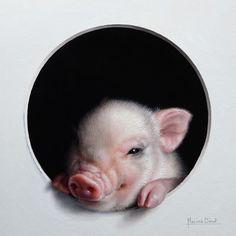 Cochon 2 by Marina Dieul