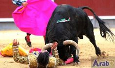 Spanish bullfighter gored to death: Bullfighter Victor Barrio was gored to death by a bull on Saturday evening in the city of Teruel,…