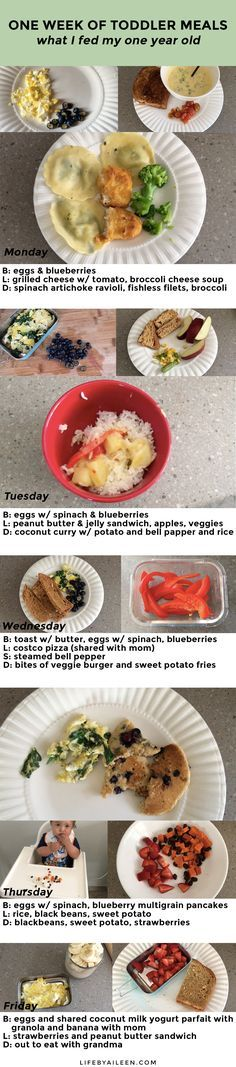 One Week Of Toddler Meals