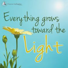 The Proctor Gallagher Institute is a place to create positive momentum for YOUR continuous growth. Bob Proctor Quotes, Deep Meditation, Inspirational Phrases, Happy Earth, Garden Quotes, Mind Tricks, Positive Mind, Be Kind To Yourself, Live In The Now