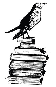Vinyl Wall Decal Sticker Art - Raven with Books - Halloween Decoration - Large