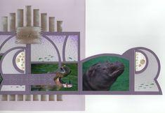 hippopotames 4