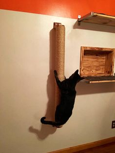 A nifty 4 climbing pole made with natural products; 100% natural sisal, made out of PVC and wooden mounting brackets (see mounting brackets finishes below) This pole gives your kitty/kitties the possibility to climb, scratch and reach their next destination as well engage in much