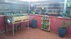Hort urbà a la terrassa. Hem muntat amb un palé gran i les proteccions laterals una taula de cultiu. Amb 2 palés, mes petits  uns jardins verticals a la paret, un d'aromàtiques i el segon de cactus.
