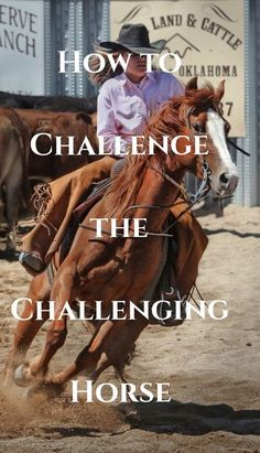 Do you have a horse who just seems to push your buttons? Read on for ways to challenge them back and help them become an amazing horse to ride.