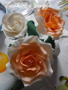 rose salmone