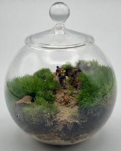 Terrario de musgo vivo en bola de cristal de diámetro 10 cm. Todos los productos utilizados son naturales. Natural, Home Decor, Moss Terrarium, Terrariums, Mini Gardens, Crystal Ball, Fairies Garden, Unique Gifts, Crystals