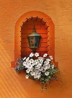 Lovely ~jmr - Best of Wallpapers for Andriod and ios Orange Aesthetic, Aesthetic Colors, Aesthetic Pictures, Green And Orange, Orange Color, Orange You Glad, Orange Walls, Rainbow Wall, Orange Crush