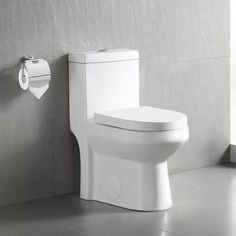 DeerValley Dual-Flush Elongated One-Piece Toilet (Seat Included) & Reviews   Wayfair
