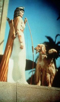 Gene Tierney as Baketamon, sister of the Pharaoh Horemheb, from the movie The Egyptian (Sinuhe)