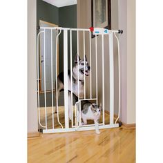 """Carlson Pet Products Extra Tall Expandable Gate with Small Pet Door - 29""""; - 52""""; W X 41""""; H. Tough chew proof metal construction. Convenient one-touch walk-thru design. Pressure mounting system makes installation easy. Pet door allows small animals to pass through. Perfect for top/bottom of stairways. - http://www.petco.com/shop/en/petcostore/carlson-pet-products-extra-tall-expandable-gate-with-small-pet-door"""