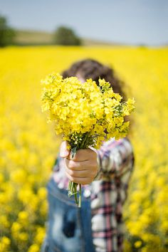 Field Of Flowers Photography ; Field Of Flowers Hand Photography, Girl Photography Poses, Creative Photography, Fields Of Gold, Girl Photo Poses, Jolie Photo, Mellow Yellow, Yellow Flowers, Beautiful Flowers