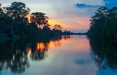 Holland America Line Reveals Details for 2021 Grand World Voyage Cupuacu, Holland America Line, South America, Xingu, Water Pictures, Amazon River, South Pacific, Landscape Photography, Travel Tips