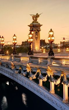 Pont Alexandre Bridge . Paris