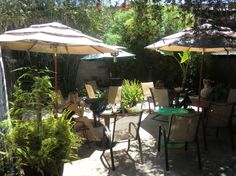 Another of my favorite writing spots. Monica at Park, San Diego. This is the back patio - beautiful, feels secluded, try the pastries.