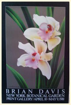 BRIAN DAVIS - CYMBIDIUM New York Botanical Garden 1981 36X24 POSTER #Realism #Floral