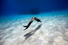 Photo taken on one breath by Eusebio Saenz de Santamaria. Underwater Photos, Underwater World, Underwater Photography, Photography And Videography, Art Of Living, Snorkeling, Under The Sea, Diving, Surfing