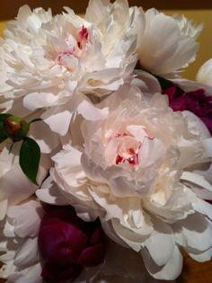 Цветы Денниса Перрина