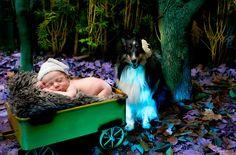 Fotógrafa paulistana clica grávidas e recém-nascidos junto dos cachorros da família - Carolina Giovanelli – Bichos
