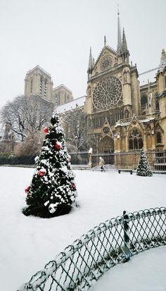 Christmas, Notre Dame, Paris | by Patrick BOUCHENARD on Flickr