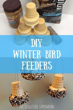 DIY Winter Bird Feeders - The Disguised Supermom
