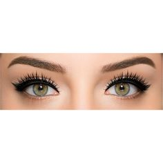 Lash Show C-704 ($18) ❤ liked on Polyvore featuring beauty products, makeup, eye makeup, eyes and beauty