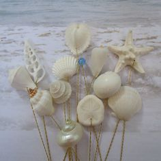 A variety of small seashells and sea life - perfect for embellishing a bouquet or centerpiece. Each has a hole drilled and is then set on an 11 inch twisted brass wire. The wire is hand twisted by me and can easily be sized smaller using utility shears.