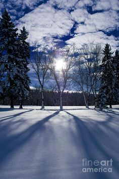 ✯ Winter Shadows