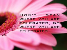Go where you are celebrated - not tolerated
