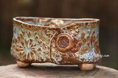 Succulent-Pottery.com