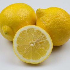 Lemons @ preppings.com