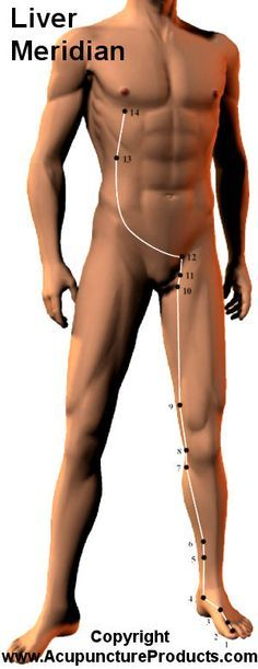 Acupuncture Liver Meridian I think this is my meridian that I suffer from Acupressure Massage, Acupressure Points, Acupuncture Points, Meridian Acupuncture, Alternative Therapies, Alternative Medicine, Qi Gong, Ayurveda, Shiatsu
