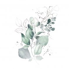 Watercolor arrangement with green leaves silver herbs bouquet isolated Free Vector Illustration Botanique, Botanical Illustration, Watercolor Illustration, Herb Bouquet, Bouquet Garni, Watercolor Leaves, Abstract Watercolor, Watercolor Paintings, Posters Gratis