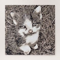rustic style - kitten jigsaw puzzle - rustic gifts ideas customize personalize