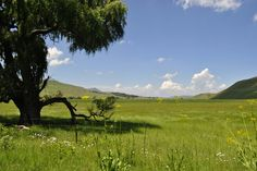 Wakkerstroom I Am An African, Places Ive Been, Places To Go, My Land, South Africa, Southern, Mountains, Nature, Travel
