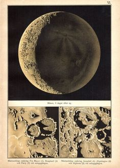 The Moon, observed and drawn by Etienne Leopold Trouvelot in 1872