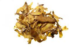 Composting FAQ