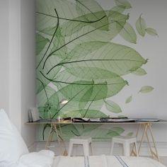 Тонкие, как бумага, изящные листья с наложением слоев.  Вверх, вниз или вбок - не имеет значения, просто красивая зелень.