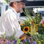 Can't get enough of our market? Follow us on Twitter and Pintrest and stay up-to-date on all the Davis Farmers Market news and info New Market, Farmers Market, Table Decorations, Marketing, Twitter, News, Plants, Flora, Plant