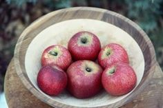 Described by tasters as spicy, clove-like, and sweet, the Hauer Pippin is a round to flat-round, medium to large apple with a thick skin that blushes a rich red very late in the season