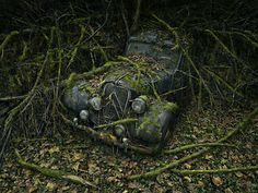 Peter Lippmann's 'Paradise Parking' is a series of photographs of vintage abandoned automobiles that have been overtaken by the surrounding foliage. The images offer a poetic look at the relationship between the creations of man and mother nature.