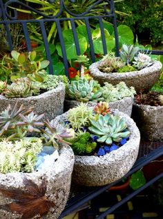 Hypertufa gardens : HGTVGardens