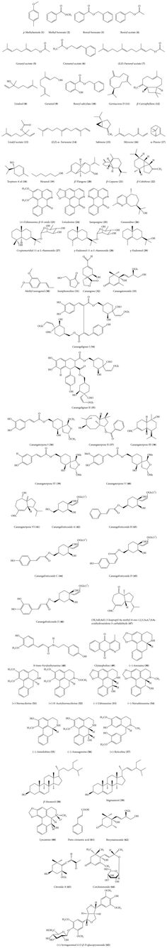 Naming Ionic Covalent Compouds Acids Bases Worksheets Http