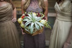 Rustic Centerpiece with a xerographica air plant, garden roses, and ranunculus // flower by Rosemary & Finch