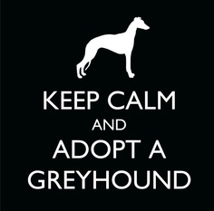 Keep Calm and Adopt a Greyhound Decal. beautifullyurban, Etsy. 2.50. Proceeds are split 50/50 with the Retired Greyhound Trust Portsmouth Retired Greyhounds.