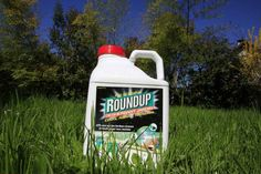Serait-ce la fin annoncée de Monsanto? De plus en plus de pays interdisent l'herbicide Roundup(alias glyphosate)de Monsanto qui causerai de nombreux cancers