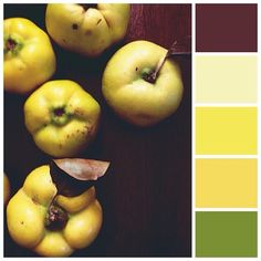 my mum always keeps lots of #quince around the house during the season :) photo taken some time last #autumn #mossomcolours #colourscheme #colourpalette