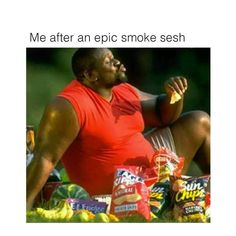 Me after an epic smoke sesh - iFunny :) Weed Music, Stoner Humor, Shopping Meme, Weed Memes, Weed Art, Dab Rig, Head Shop, True Facts, National Geographic Photos
