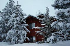 Big Bear in winter